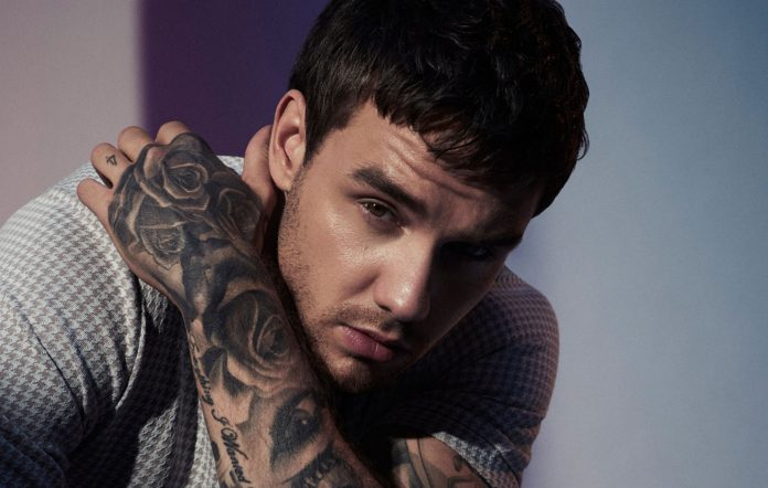 Liam Payne Reveals One Direction Is Planning 10th Anniversary Reunion - SurgeZirc US