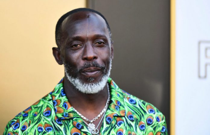 The Wire' Actor Michael K. Williams Found Dead In NYC Apartment-SurgeZirc USA
