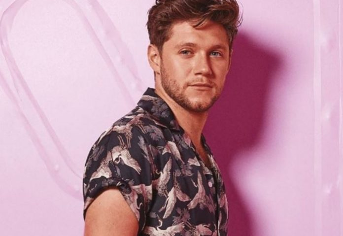 Happy Birthday!!! Fans Shower Niall Hora With Love-SurgeZirc USA