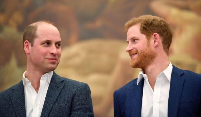 Prince Harry & Prince William Open 'Communication Channels' After Oprah Interview - SurgeZirc US