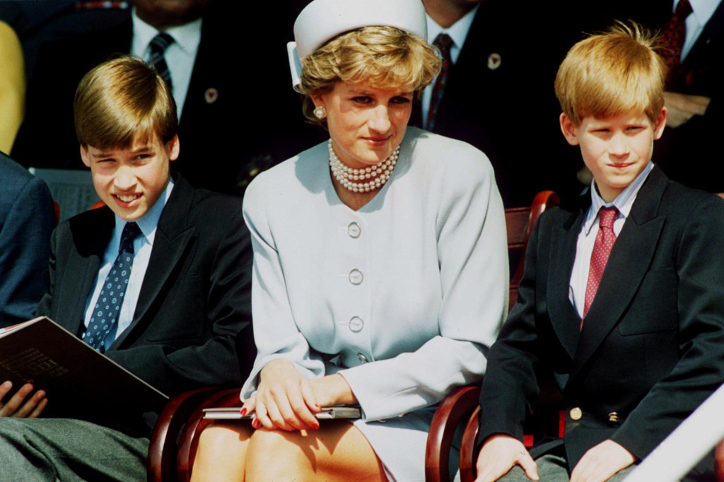 William And Harry Say Martin Bashir BBC Interview Caused Diana's Death, Watch - SurgeZirc US