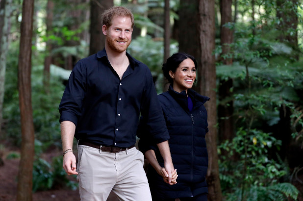 Meghan And Harry Will Collaborate On A 'Leadership' Book As Part Of $20M Deal - SurgeZirc US