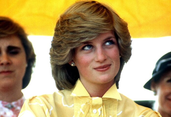 Princess Diana Looks Like Her Grandmother Cynthia In Sketch Posted By Brother - SurgeZirc US