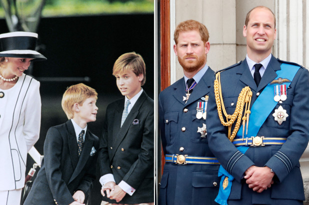 Princess Diana Would Be 'Very Upset' By William, Harry Rift, Royal Expert - SurgeZirc US